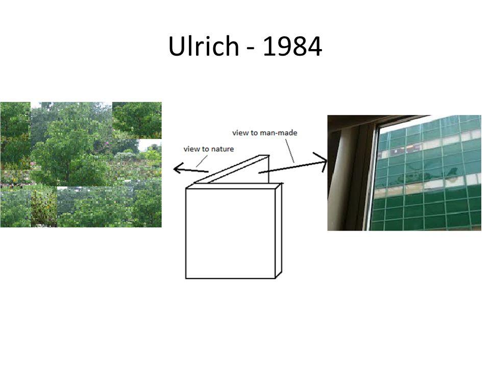 Ulrich - 1984