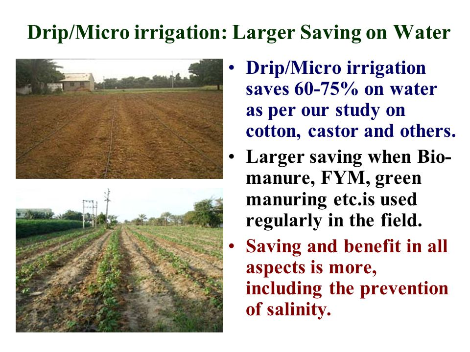 Drip/Micro irrigation: Larger Saving on Water Drip/Micro irrigation saves 60-75% on water as per our study on cotton, castor and others.