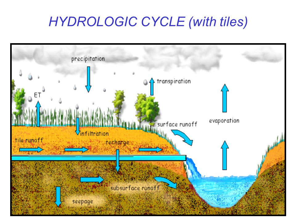 HYDROLOGIC CYCLE (with tiles)
