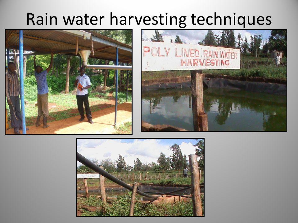 Rain water harvesting techniques