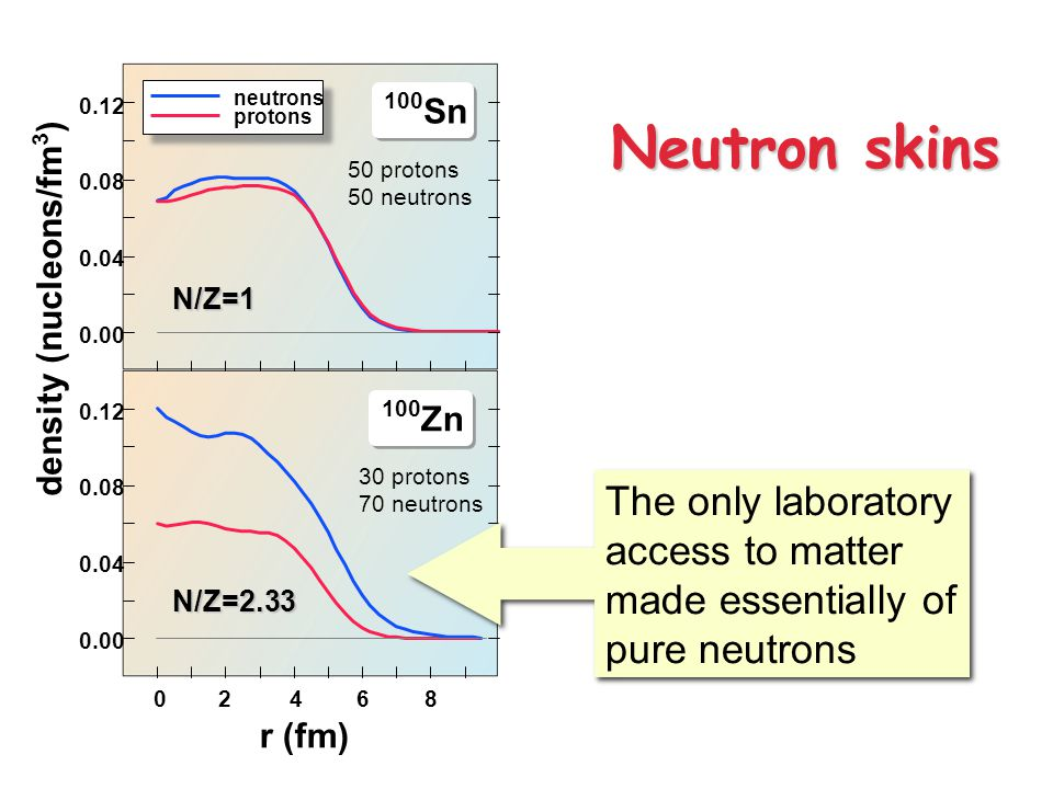 0.00 0.04 0.08 0.12 0.00 0.04 0.08 0.12 02864 100 Sn 100 Zn N/Z=2.33 N/Z=1 r (fm) density (nucleons/fm 3 ) neutrons protons Neutron skins The only laboratory access to matter made essentially of pure neutrons 50 protons 50 neutrons 30 protons 70 neutrons