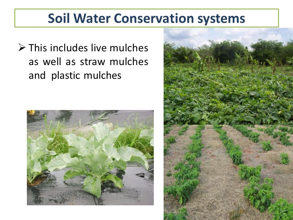 Other conservation techniques Re-cycling of water Use of effluents Dry land farming techniques Improved watershed management