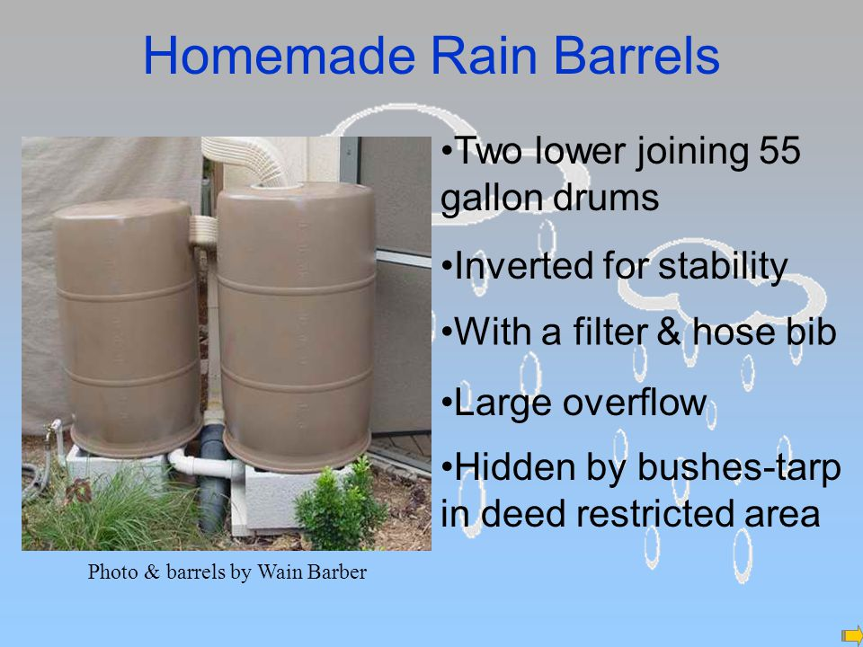 Homemade Rain Barrels Photo & barrels by Wain Barber Two lower joining 55 gallon drums Inverted for stability With a filter & hose bib Large overflow Hidden by bushes-tarp in deed restricted area