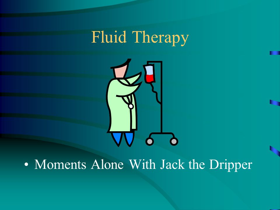 Fluid Therapy Moments Alone With Jack the Dripper