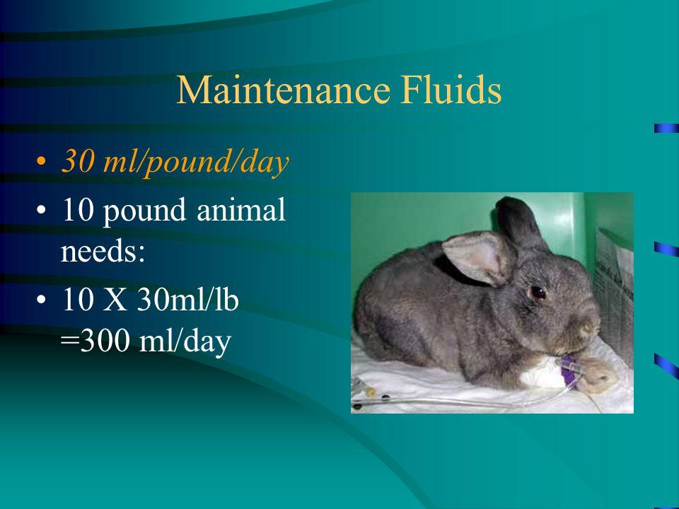Maintenance Fluids 30 ml/pound/day 10 pound animal needs: 10 X 30ml/lb =300 ml/day