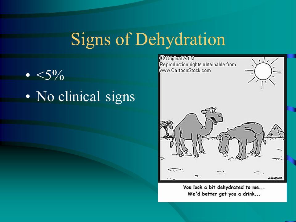 Signs of Dehydration <5% No clinical signs
