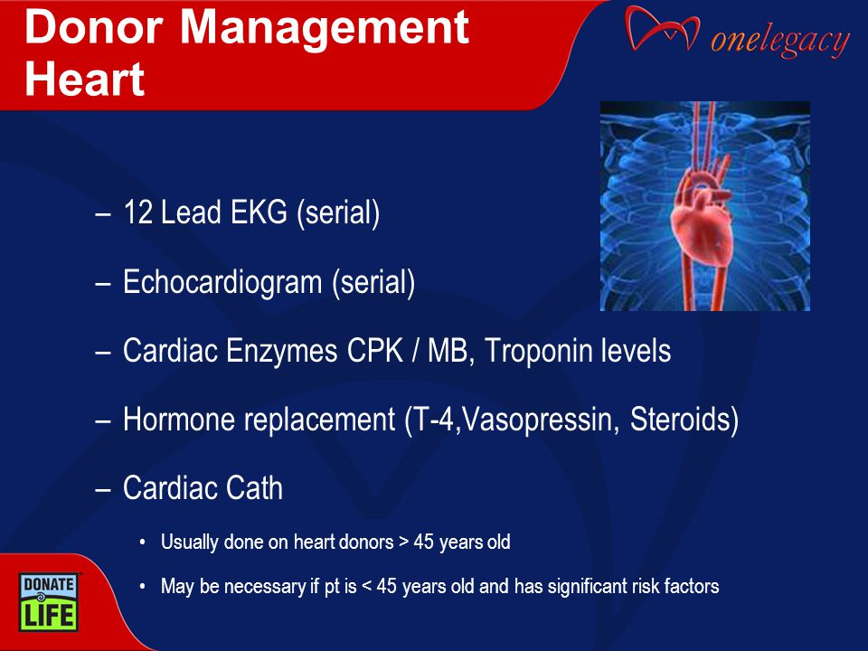 Donor Management Heart –12 Lead EKG (serial) –Echocardiogram (serial) –Cardiac Enzymes CPK / MB, Troponin levels –Hormone replacement (T-4,Vasopressin, Steroids) –Cardiac Cath Usually done on heart donors > 45 years old May be necessary if pt is < 45 years old and has significant risk factors
