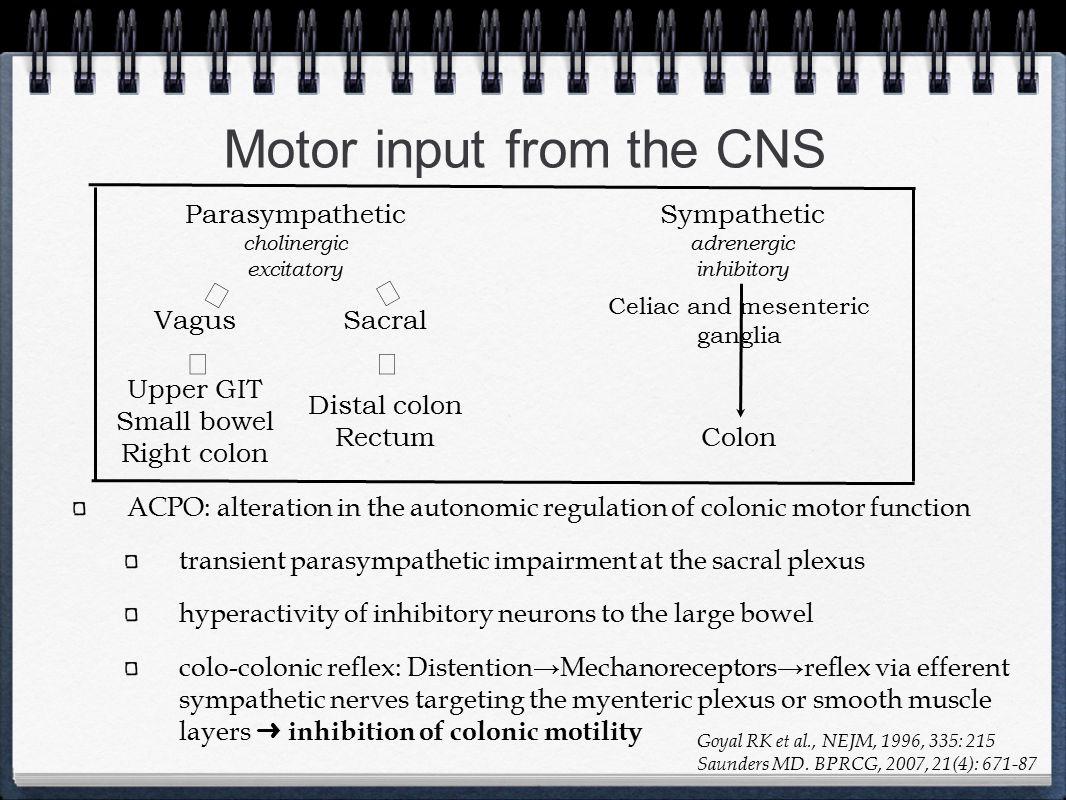 Motor input from the CNS Parasympathetic cholinergic excitatory Sympathetic adrenergic inhibitory VagusSacral Distal colon Rectum Upper GIT Small bowe