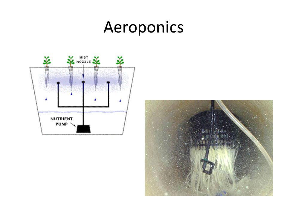 Aeroponics
