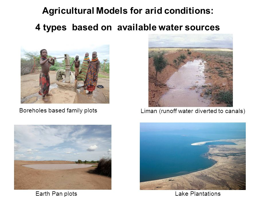 Agricultural Models for arid conditions: 4 types based on available water sources Earth Pan plots Lake Plantations Boreholes based family plots Liman