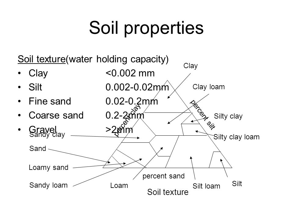Soil properties Soil texture(water holding capacity) Clay<0.002 mm Silt0.002-0.02mm Fine sand0.02-0.2mm Coarse sand0.2-2mm Gravel>2mm percent clay percent sand percent silt Soil texture Sand Loamy sand Sandy loam Loam Silt loam Silt Silty clay loam Silty clay Clay loam Clay Sandy clay