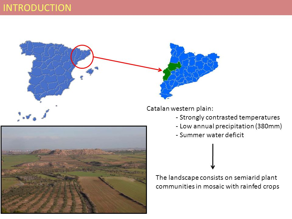 INTRODUCTION Catalan western plain: - Strongly contrasted temperatures - Low annual precipitation (380mm) - Summer water deficit The landscape consist