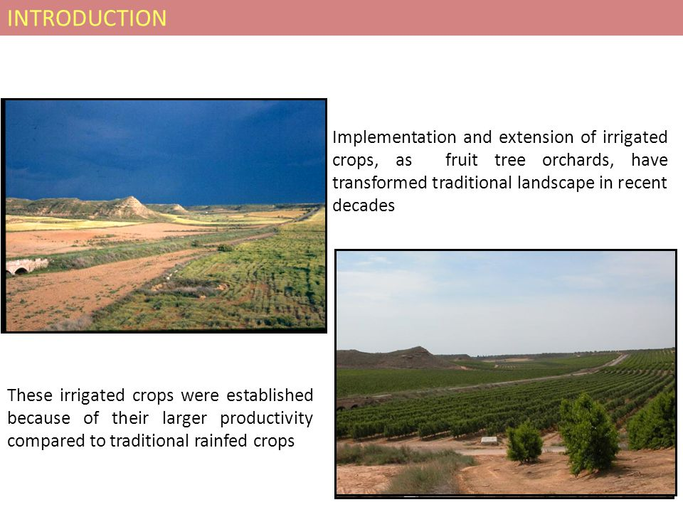 Implementation and extension of irrigated crops, as fruit tree orchards, have transformed traditional landscape in recent decades These irrigated crops were established because of their larger productivity compared to traditional rainfed crops INTRODUCTION