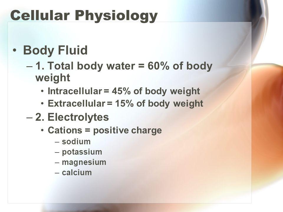 Cellular Physiology Body Fluid –1. Total body water = 60% of body weight Intracellular = 45% of body weight Extracellular = 15% of body weight –2. Ele