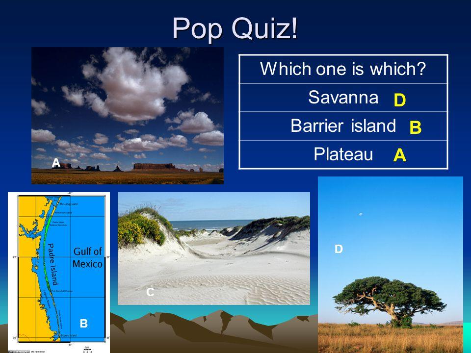 Pop Quiz! Which one is which? Savanna Barrier island Plateau A B C D D B A