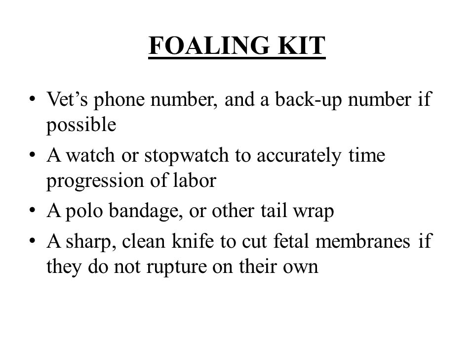 FOALING KIT Vet's phone number, and a back-up number if possible A watch or stopwatch to accurately time progression of labor A polo bandage, or other tail wrap A sharp, clean knife to cut fetal membranes if they do not rupture on their own