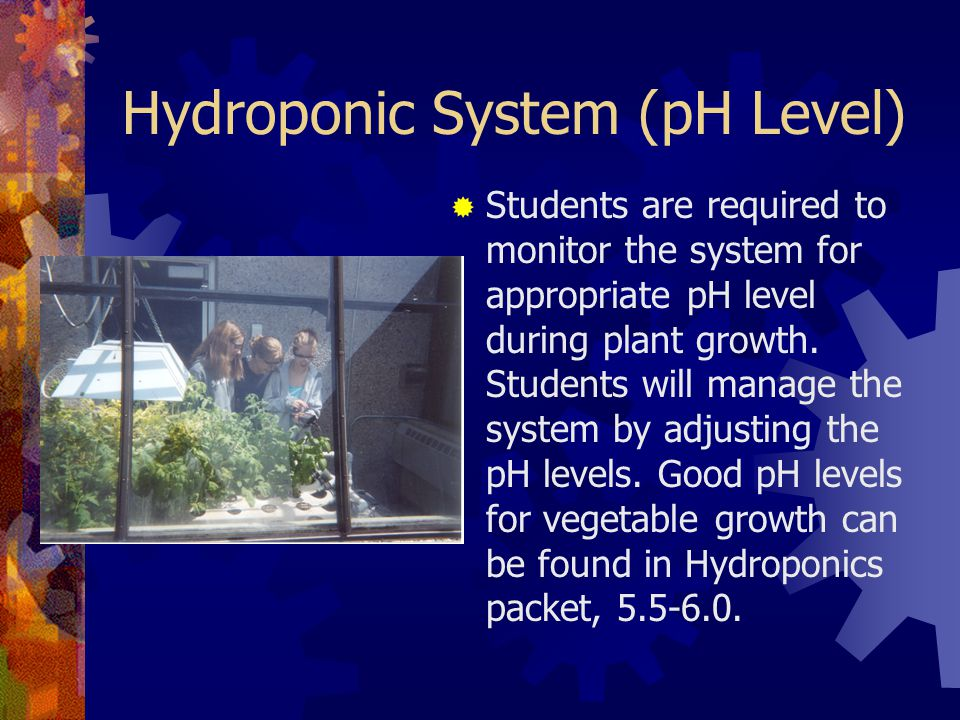 Hydroponic System (pH Level)  Students are required to monitor the system for appropriate pH level during plant growth.