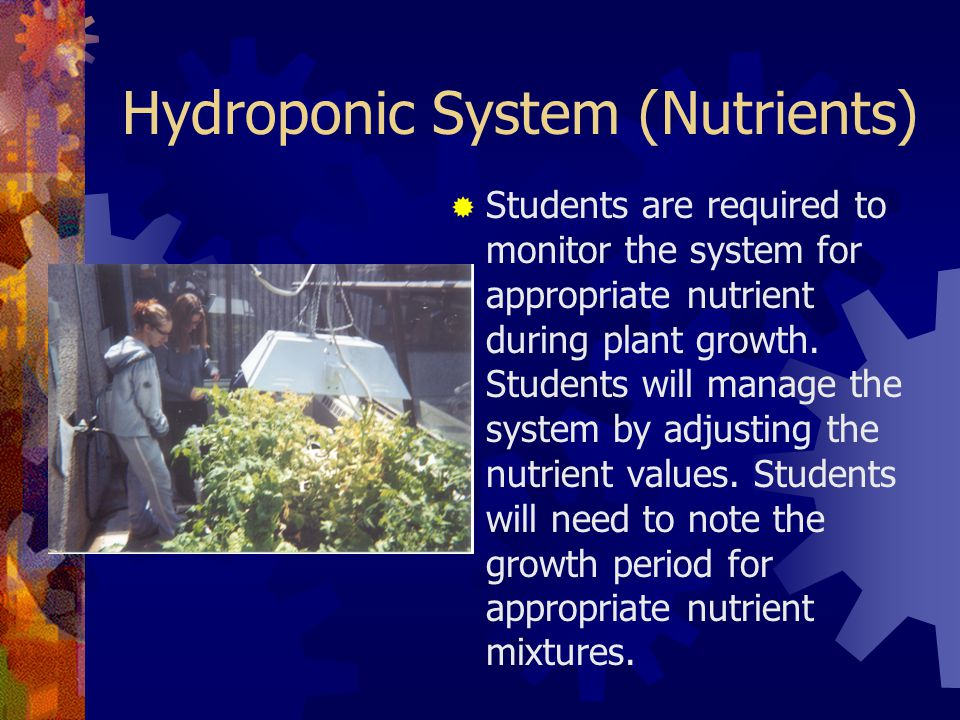 Hydroponic System (Nutrients)  Students are required to monitor the system for appropriate nutrient during plant growth.