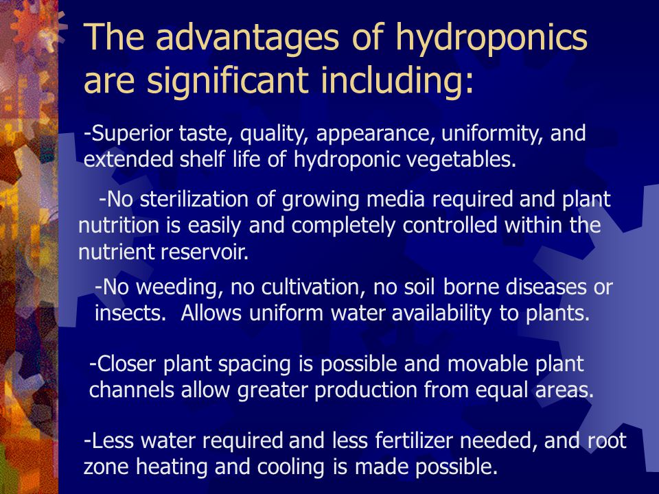 The advantages of hydroponics are significant including: -Superior taste, quality, appearance, uniformity, and extended shelf life of hydroponic vegetables.
