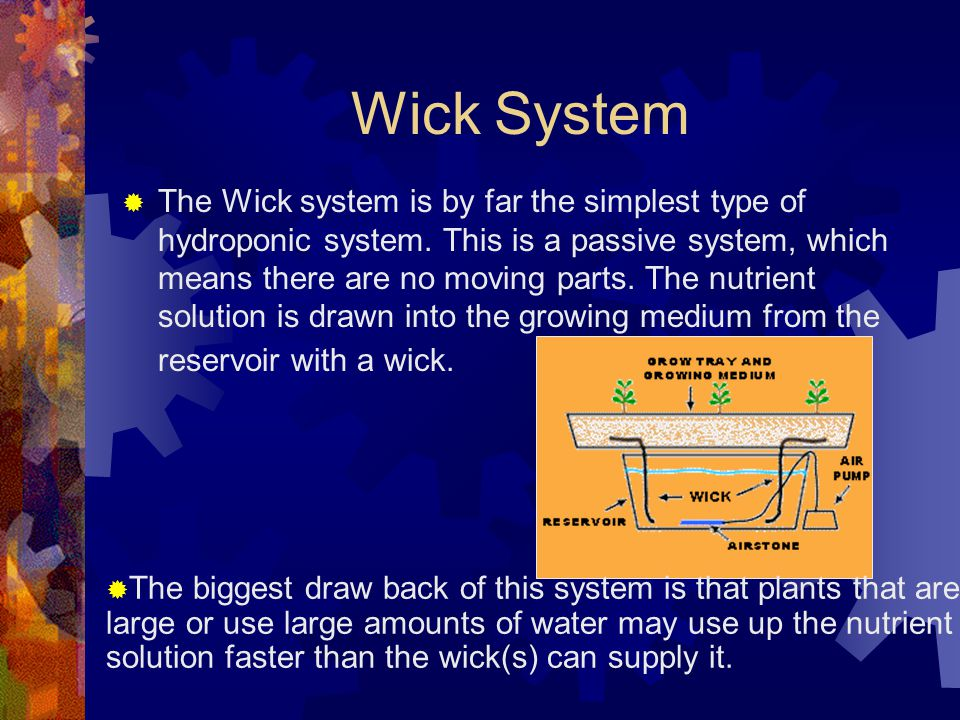 Wick System  The Wick system is by far the simplest type of hydroponic system.