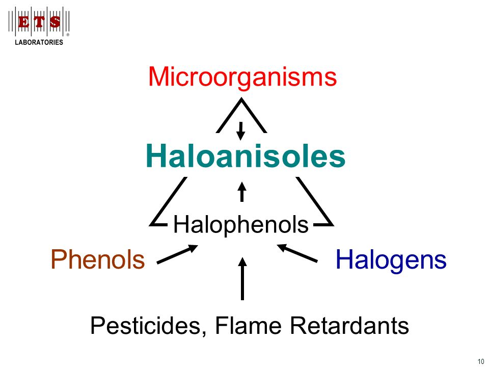 10 Phenols Microorganisms Halogens Haloanisoles Halophenols Pesticides, Flame Retardants