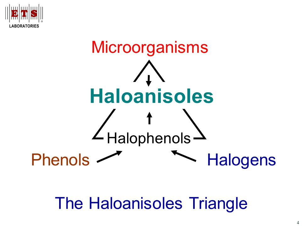 4 Phenols Microorganisms Halogens Haloanisoles Halophenols The Haloanisoles Triangle