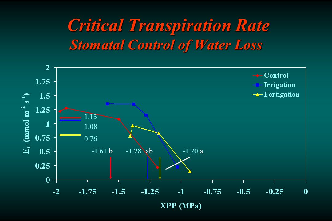 Critical Transpiration Rate Stomatal Control of Water Loss Critical Transpiration Rate Stomatal Control of Water Loss aabb-1.61-1.28-1.20 1.13 1.08 0.76