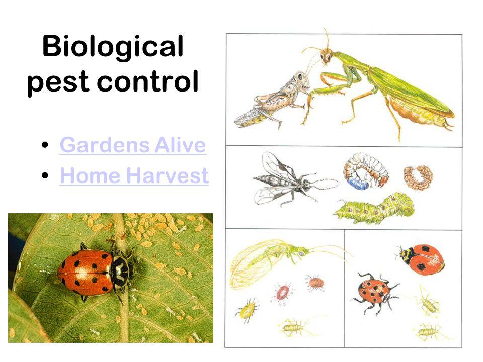 Biological pest control Gardens Alive Home Harvest