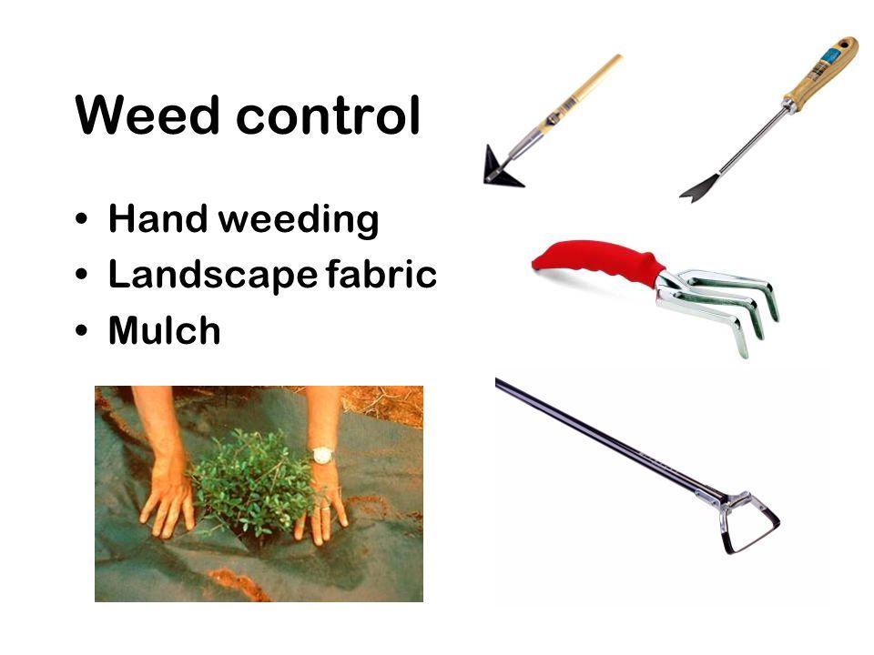 Weed control Hand weeding Landscape fabric Mulch