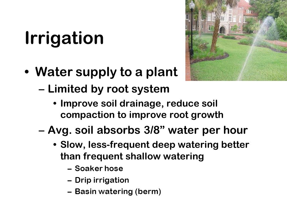 Irrigation Water supply to a plant –Limited by root system Improve soil drainage, reduce soil compaction to improve root growth –Avg. soil absorbs 3/8