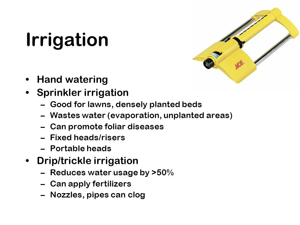 Hand watering Sprinkler irrigation –Good for lawns, densely planted beds –Wastes water (evaporation, unplanted areas) –Can promote foliar diseases –Fi