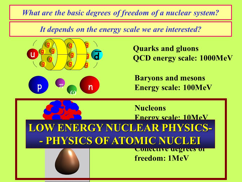 What are the basic degrees of freedom of a nuclear system.