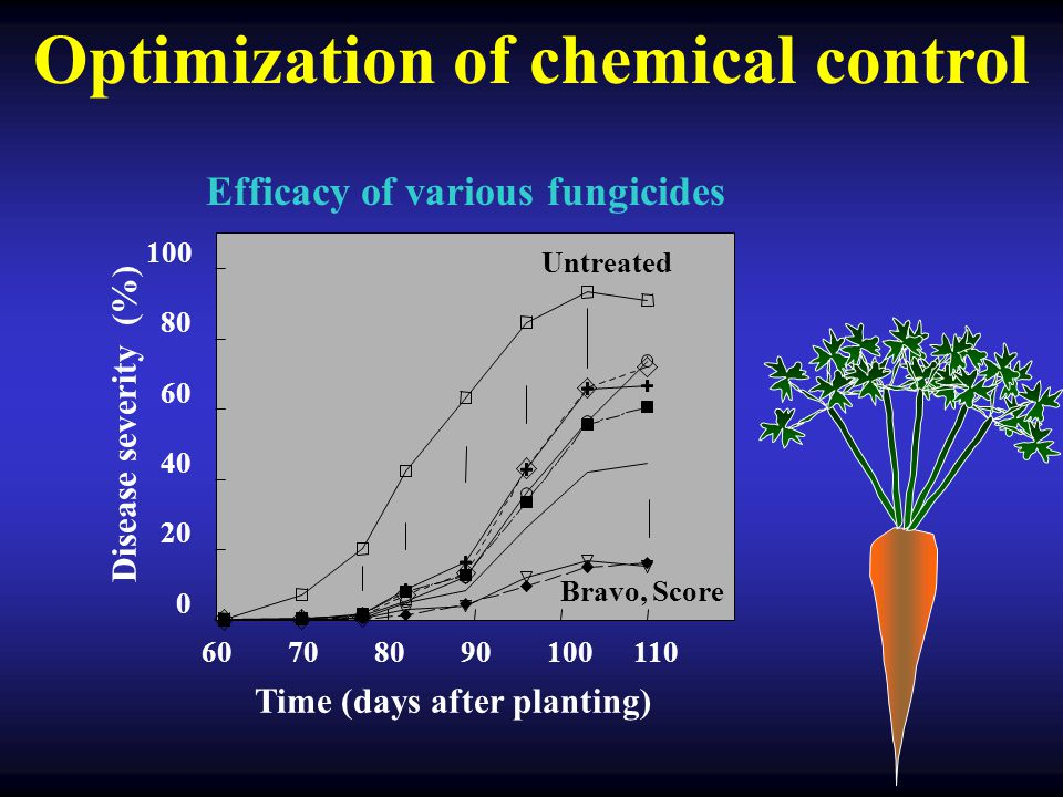Optimization of chemical control 60708090100110 0 20 40 60 80 100 Disease severity (%) Untreated Bravo, Score Time (days after planting) Efficacy of v