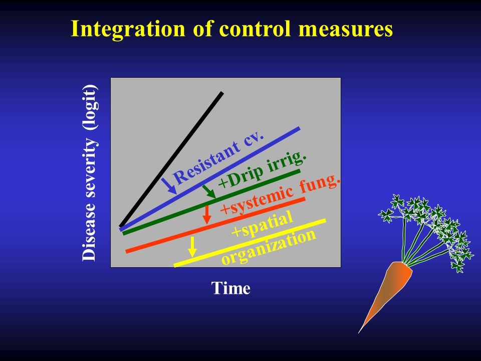 Time Disease severity (logit) Integration of control measures +Drip irrig. +systemic fung. Resistant cv. +spatial organization