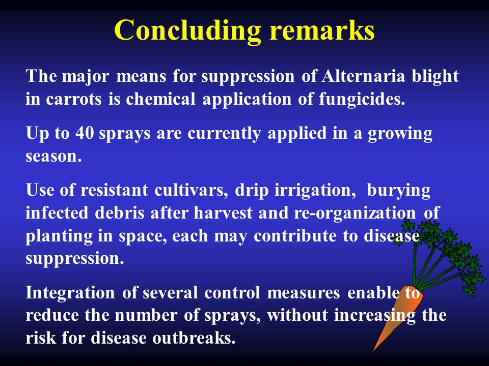 Concluding remarks The major means for suppression of Alternaria blight in carrots is chemical application of fungicides. Up to 40 sprays are currentl