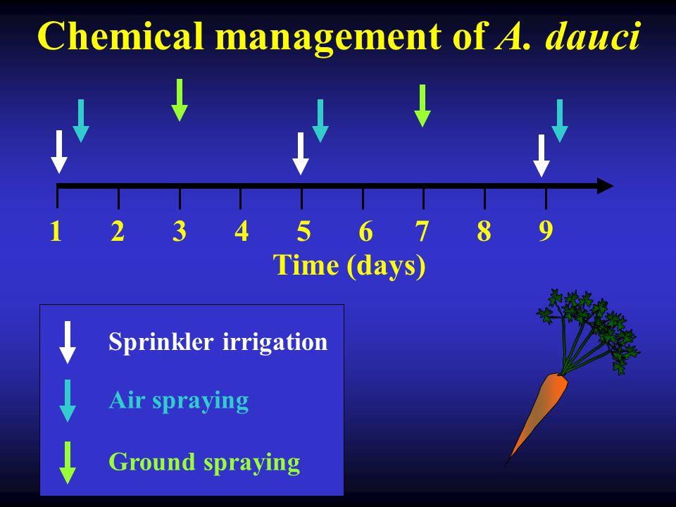 Fungicide treated plot Untreated control plot