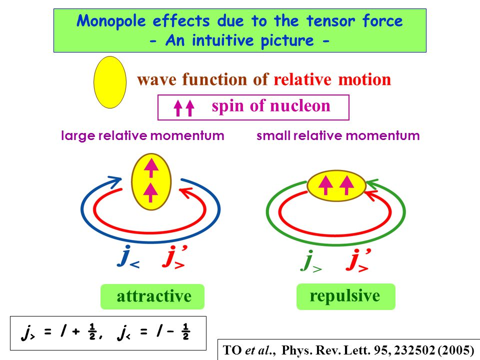 Monopole effects due to the tensor force - An intuitive picture - wave function of relative motion large relative momentum small relative momentum attractive repulsive spin of nucleon TO et al., Phys.