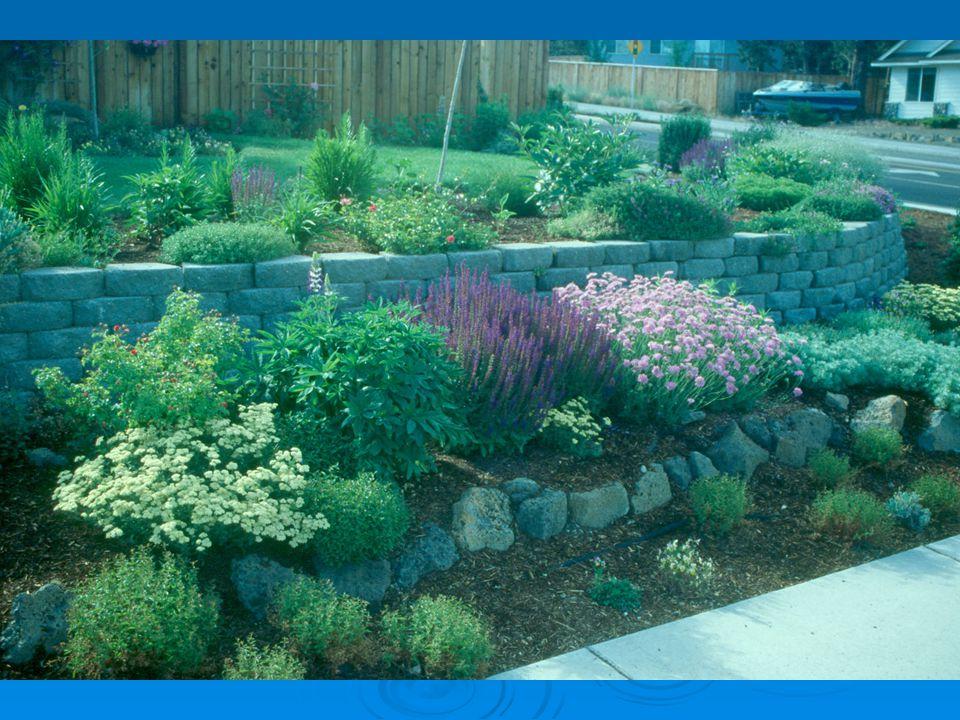 Design Elements color texture flower fragrance