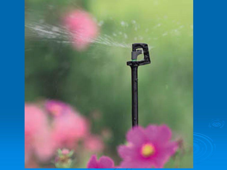 Irrigation Test dig down 6-8 ball up soil
