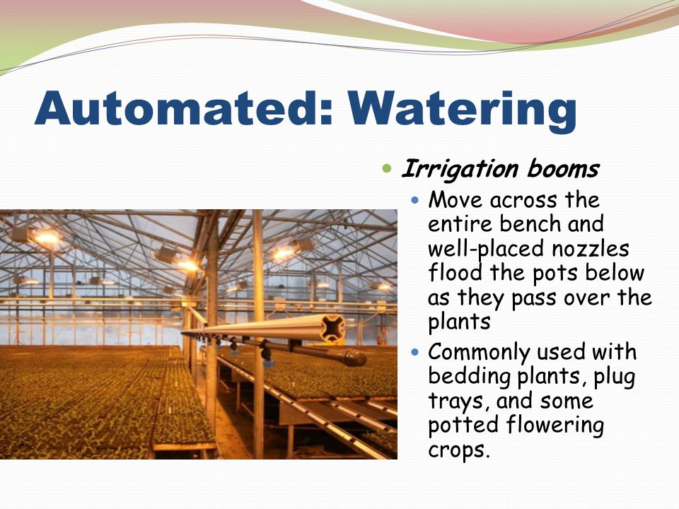 Automated: Watering Irrigation booms Move across the entire bench and well-placed nozzles flood the pots below as they pass over the plants Commonly u