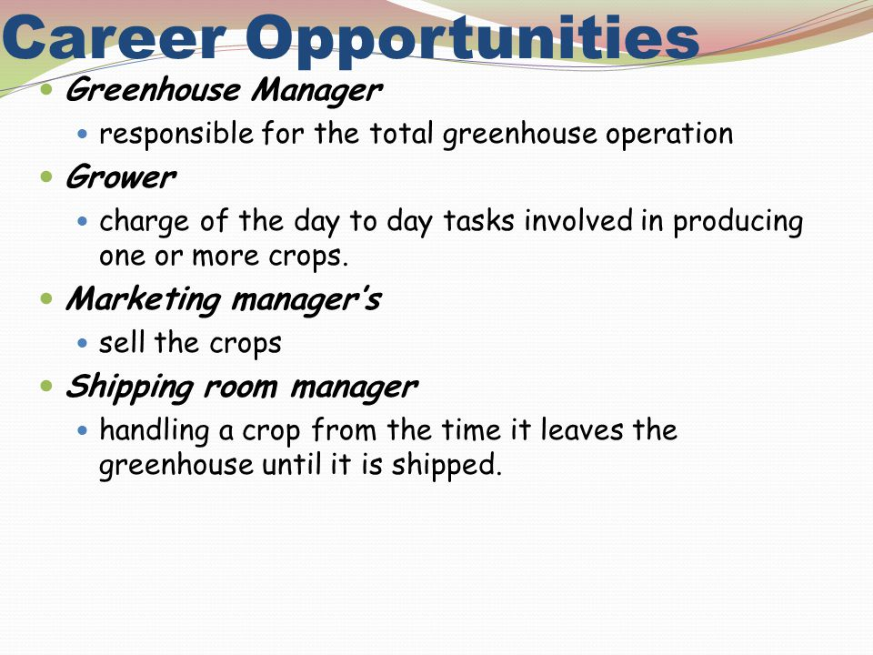 Career Opportunities Greenhouse Manager responsible for the total greenhouse operation Grower charge of the day to day tasks involved in producing one