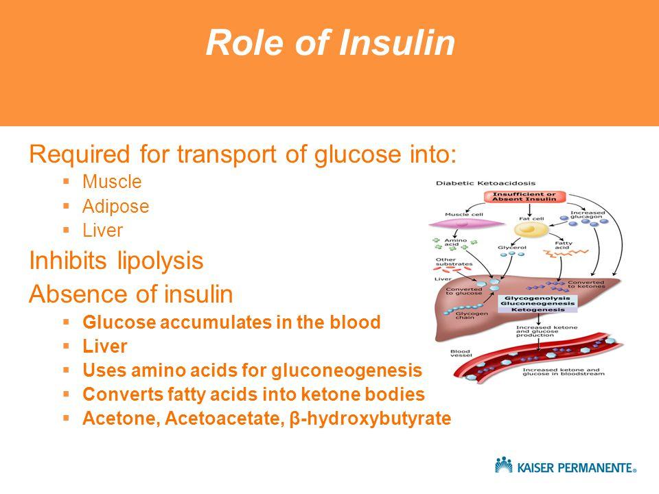 Counterregulatory Hormones - DKA Increases insulin resistance Activates glycogenolysis and gluconeogenesis Activates lipolysis Inhibits insulin secretion Epinephrine XXXX Glucagon X Cortisol XX Growth Hormone XXX