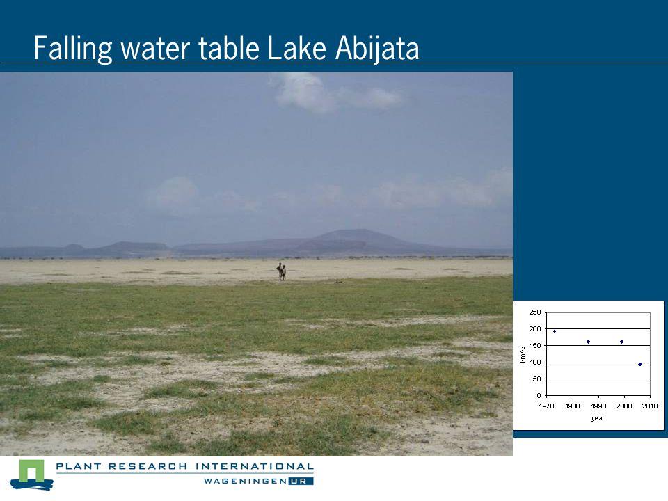 Falling water table Lake Abijata