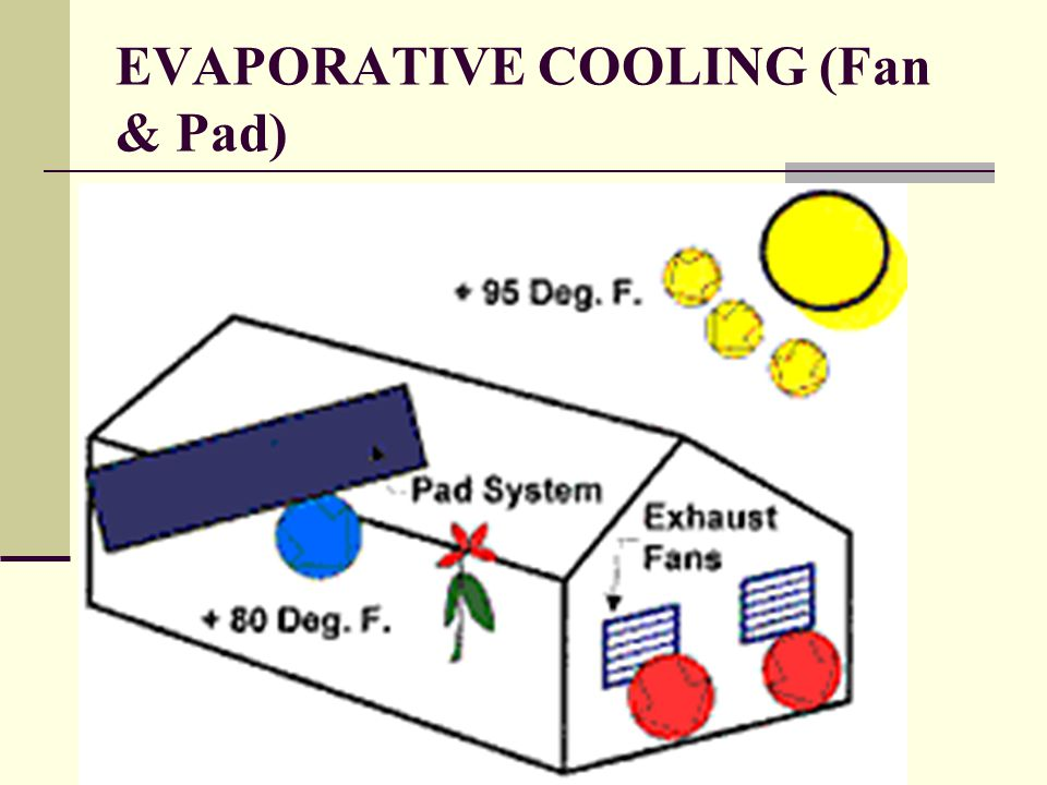 EVAPORATIVE COOLING (Fan & Pad)