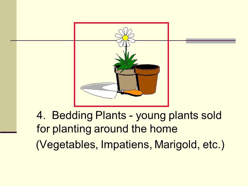 Basic Greenhouse Styles