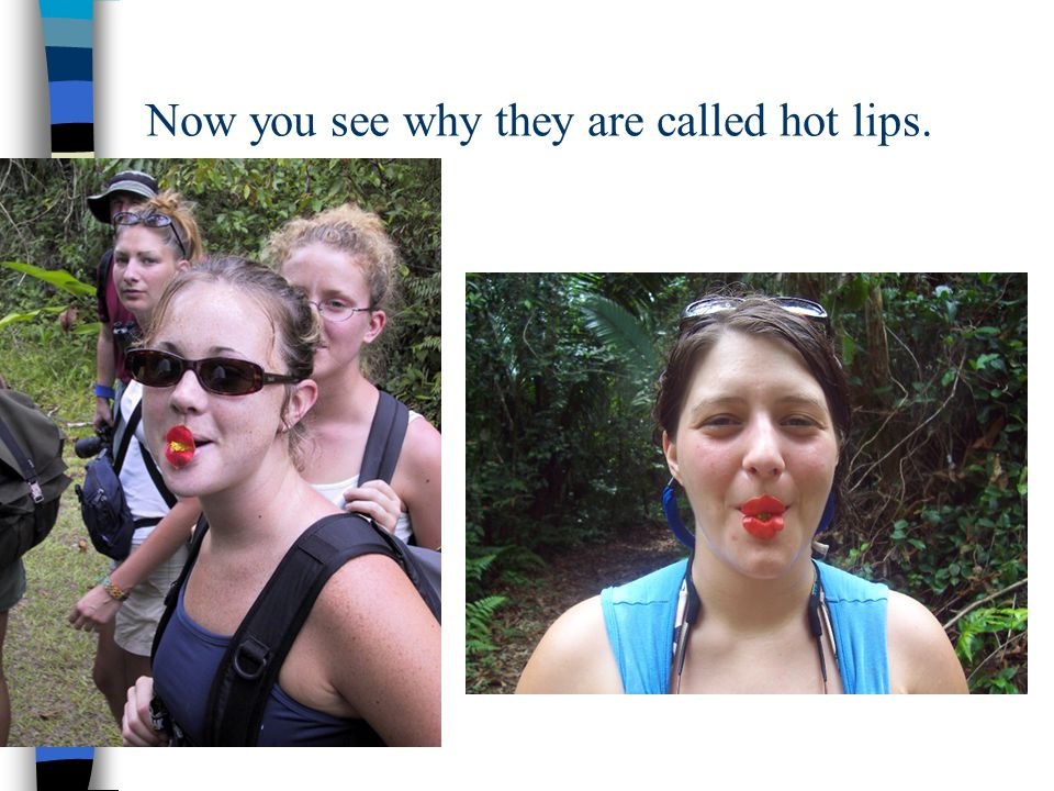 Now you see why they are called hot lips.