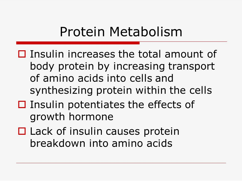 Protein Metabolism  Insulin increases the total amount of body protein by increasing transport of amino acids into cells and synthesizing protein within the cells  Insulin potentiates the effects of growth hormone  Lack of insulin causes protein breakdown into amino acids
