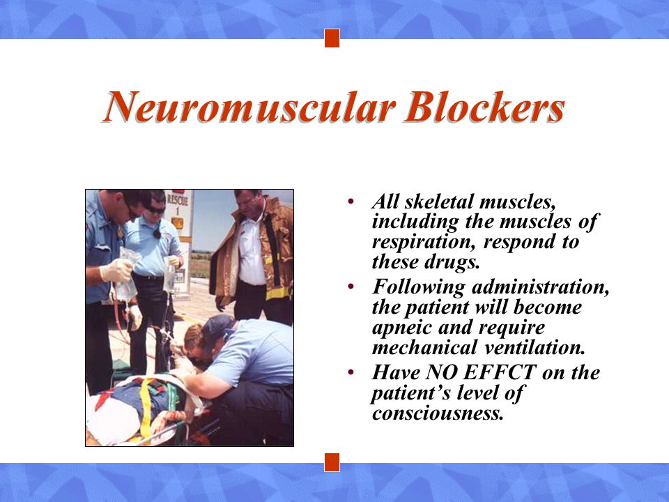 Neuromuscular Blockers All skeletal muscles, including the muscles of respiration, respond to these drugs. Following administration, the patient will
