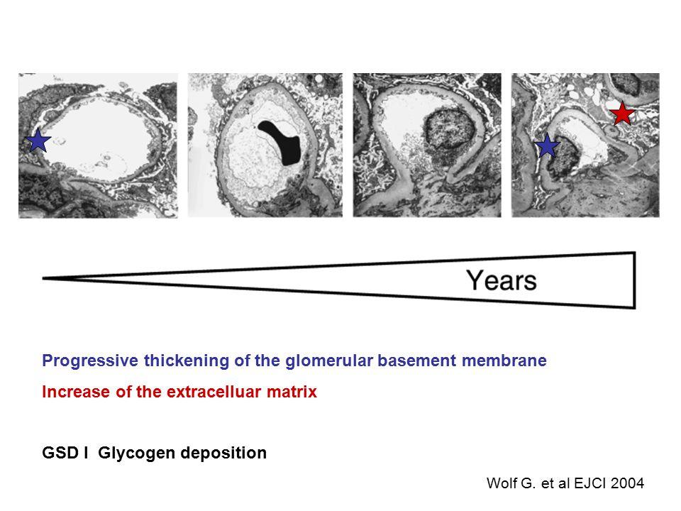 Progressive thickening of the glomerular basement membrane Increase of the extracelluar matrix GSD I Glycogen deposition Wolf G. et al EJCI 2004