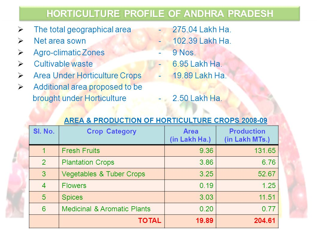 HORTICULTURE PROFILE OF ANDHRA PRADESH  The total geographical area -275.04 Lakh Ha.